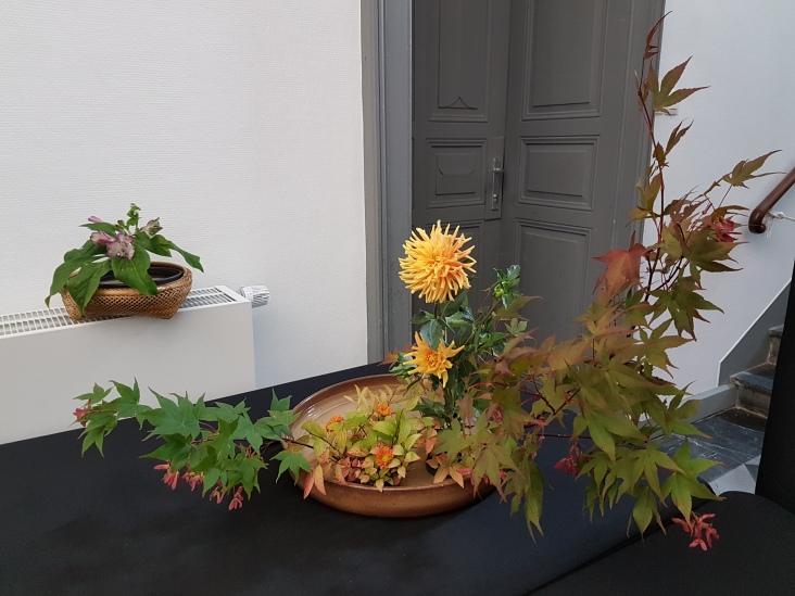 Moribana d'automne